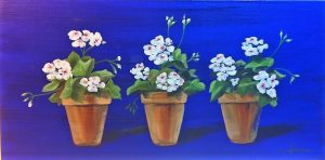 a-trio-of-white-geraniums-on-french-ultramarine-velvet-blue