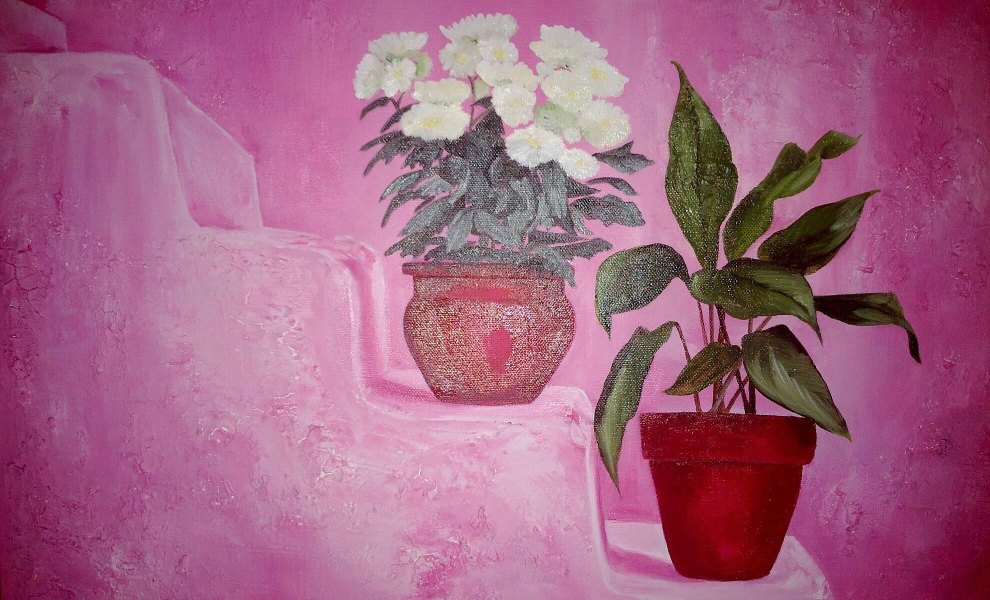 pink-pots-in-chaouenne